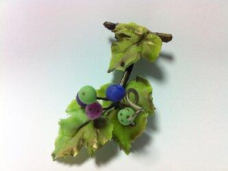 野葡萄のコサージュの画像