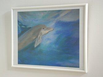 海からの友達 いるかくん (ポスター)の画像