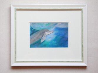 海からの友達 青い波のなかでの画像