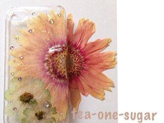 絶対買い‼︎新色人気iPhone.6押し花の画像