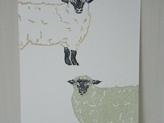 葉書〈羊2匹(タテ)-1〉の画像