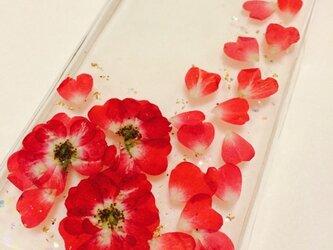 紅い薔薇フレームのiPhoneカバーの画像