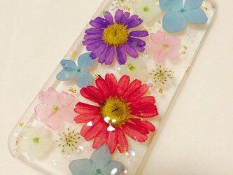 好きなカラーいっぱいのiPhone5カバーの画像