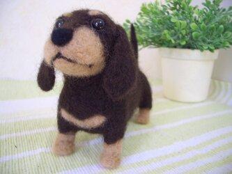 ミニチュアダックス子犬*羊毛フェルトの画像