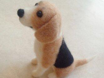 ビーグル犬*羊毛フェルトの画像