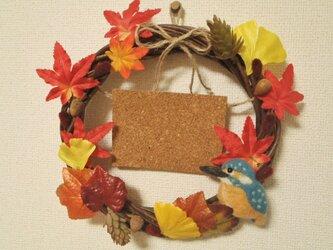 秋のカワセミリースの画像