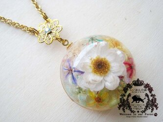 本物のお花のミルフィオリ風ネックレスの画像