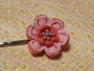 桃色の花 シンプルピンの画像