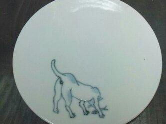 染付4寸猫皿 15の画像