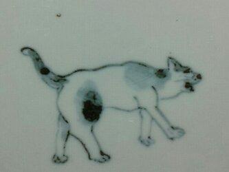 染付4寸猫皿 21の画像