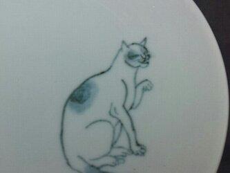 染付5寸猫皿 26の画像