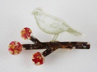 小鳥と赤い実のブローチBの画像