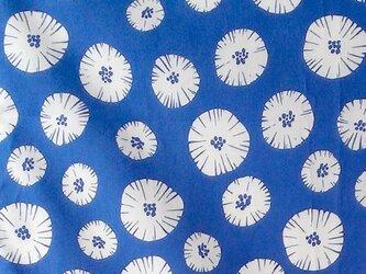 果物の断面柄(ブルー)  生地1mの画像