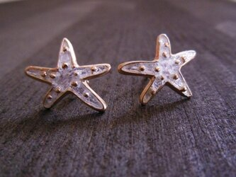 Starfish Pierce/Crystalの画像