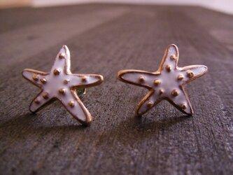 Starfish Pierce/Whiteの画像