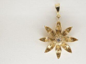 K14/Dia star anis pendantの画像