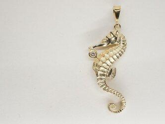 K14/Dia hippocampus pendantの画像