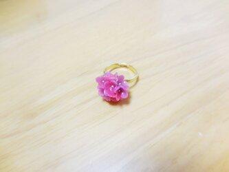 紫陽花のピンキーリングの画像