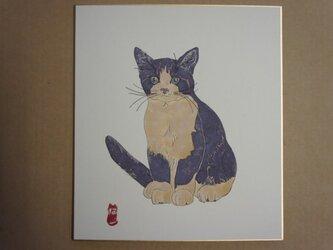 仔猫図 鉢割れの画像