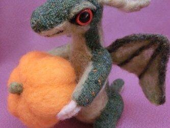 ベビードラゴン「パンプキン」の画像