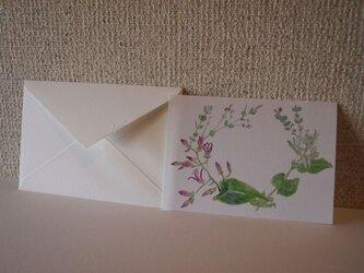 ほととぎす 便箋 10枚入り+封筒3枚の画像