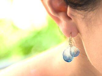 アジサイ【藍染】ふたつ花片のピアス 14kgf /イヤリングの画像