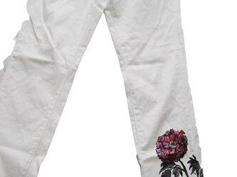 牡丹の白パンツ の画像