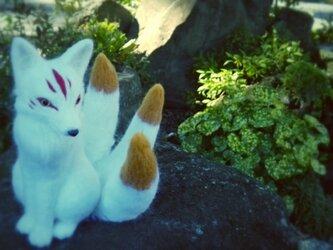 羊毛♪天狐の画像