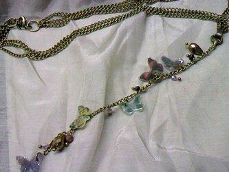 蝶の群れ Tネックレスの画像