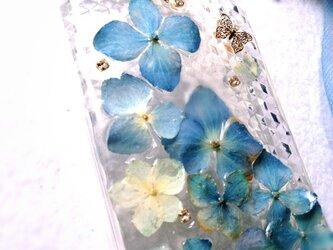本物の秋色紫陽花でiphoneケースの画像