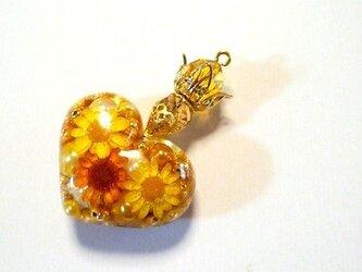 王女の香水Yellowgoldネックレスの画像