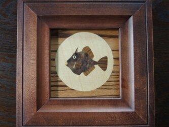 木象嵌額絵~カワハギ~の画像