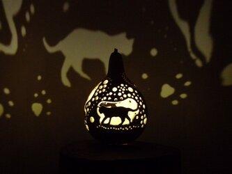 ひょうたんランプ お散歩ネコの画像