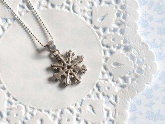 snow crystal 2の画像