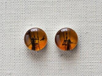 まるい耳飾り38/夕焼けの電柱の画像