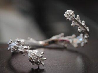 A様オーダーバングル『ぺんぺん草&木の実』の画像