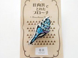巻貝のブローチの画像