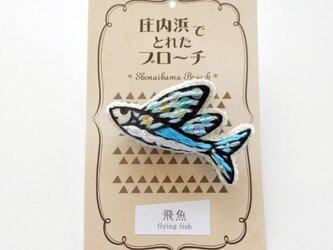 【再販2】飛魚のブローチの画像