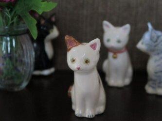 猫の置物 シロブチの画像