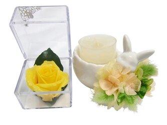 【プリザーブドフラワーお月様色した黄色い薔薇キューブとアロマキャンドルのギフトセット】紫陽花の洋服を着たのウサギさんからの贈り物の画像