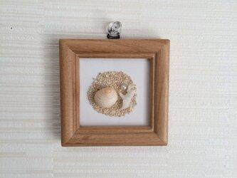 ピンク巻貝とサンゴのminiフレームの画像
