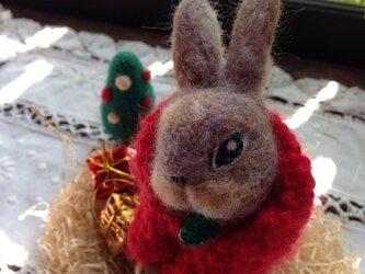 野うさぎのクリスマスセットの画像