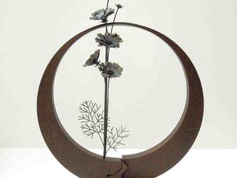 【鉄の植物 カセキの時間シリーズ】OKP-093 天の雫A コスモスの画像