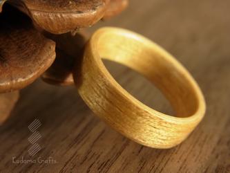 木の指輪~モビンギ~の画像
