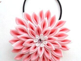 【つまみ細工】ちょっと大きめ 布花のヘアゴム(ピンク/白)の画像