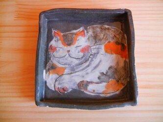 猫のまるまるグレーの角皿:A横イエローの画像