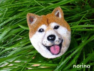 ■羊毛フェルト笑顔の柴犬ブローチ■の画像