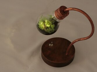 mai様お問い合わせ分bulb terrarium miniの画像