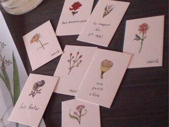 花8種 ミニカードの画像