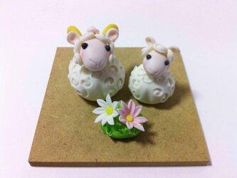 羊の親子の画像